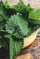 fragrant lemon balm leaves