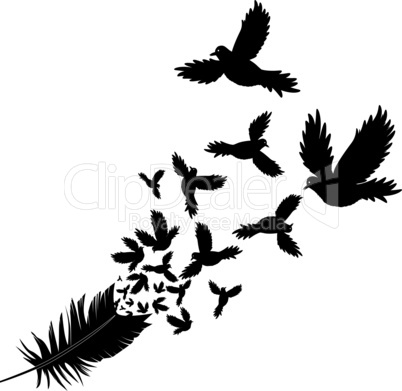 Feather of bird vector illustration sketch tattoo