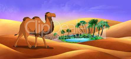 Bactrian Camel Goes Through the Desert