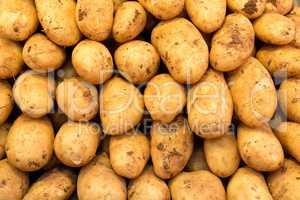 Kartoffeln auf einem Marktstand