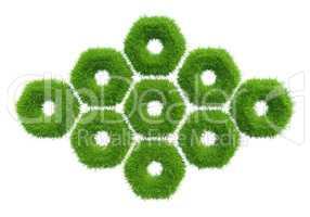 green grass hexagon. natural background texture.