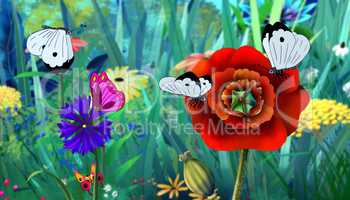White Butterfly and Red Flower full color image