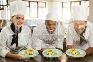 Portrait of smiling chefs team holding dessert plates