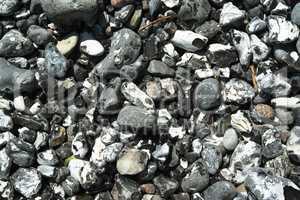 Steine am Steilufer des Jasmunder Nationalparks