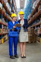 Standing female coworkers smiling