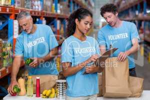 Portrait of volunteers working