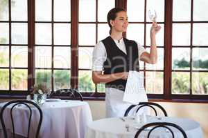 Waitress examining a clean wine glass
