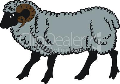 Big a ram