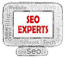Seo Experts Indicates Search Engines And Ability