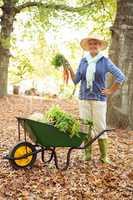 Portrait of confident gardener with vegetables in wheelbarrow at