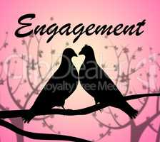 Engagement Doves Shows Couple Engaged And Commitment