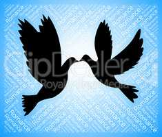 Dating Doves Indicates Sweetheart Relationship And Internet