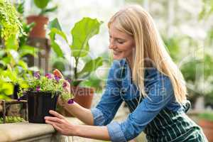 Woman keeping potted flowering plant on retaining wall
