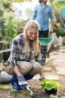 Gardener planting while man working in background