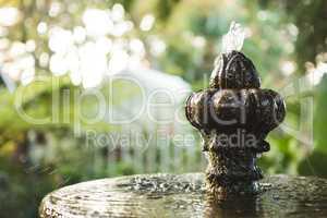Close-up of fountain at botanical garden