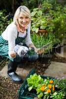 Female gardener holding potted plant while using digital tablet
