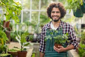 Smiling male gardener holding potted plant