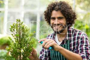 Happy male gardener pruning plants at greenhouse