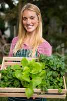 Portrait of happy gardener with leaf vegetables in crate at gard