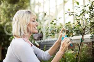 Female gardener pruning plants outside greenhouse