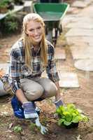 Female gardener planting outside greenhouse