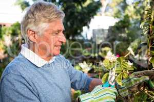 Happy gardener pruning twigs of plants at garden