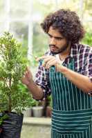 Young male gardener pruning potted plants