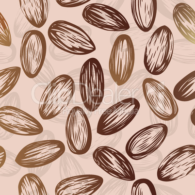 Almonds nut seamless vector background drawing of nuts  edible seeds of the tree, used in animal feed and human.