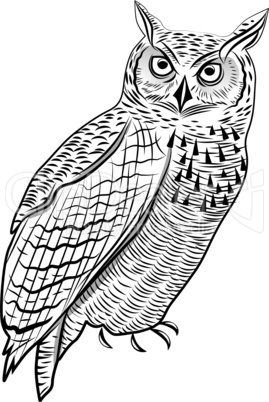Owl bird as halloween symbol for mascot or emblem design vector illustration for t-shirt. Sketch tattoo design.
