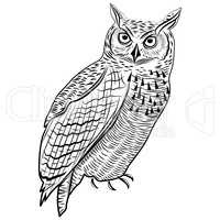 Turtle animal head symbol for mascot or emblem design, logo vector illustration for t-shirt tattoo design.