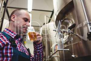 Manufacturer smelling beer at brewery