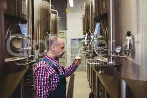 Manufacturer looking at beer glass in brewery