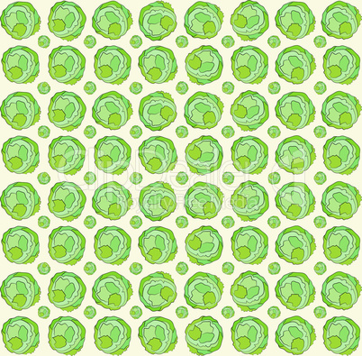 Background of cabbage.