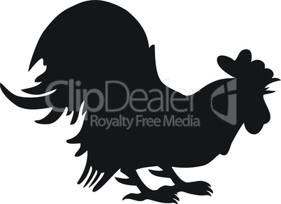 Silhouette of cock