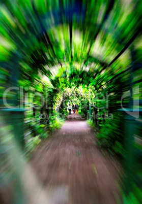 Green corridor motion zoom abstraction