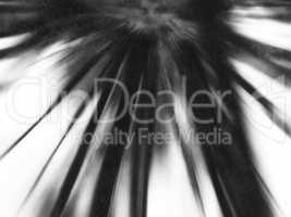 Vertical black and white motion blur abstraction backdrop