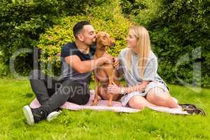 Couple on rug with man kissing dog