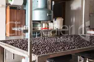 Packaging Olives
