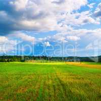 Bright rural landscape
