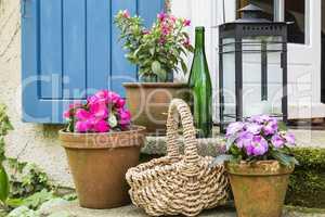 Stillleben mit Blumentöpfen, still live with flower pots