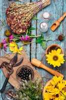Set of medicinal herbs