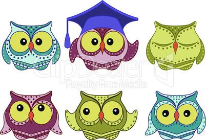 Six amusing colorful owls