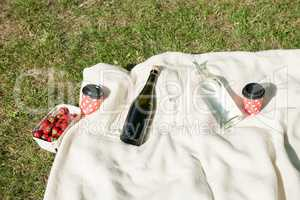 Champagne bottle on blanket