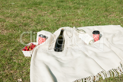 Champagne bottle on blanket