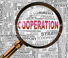Cooperation Magnifier Indicates Team Work And Collaborate
