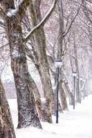Alley in snowy a day from Hungary