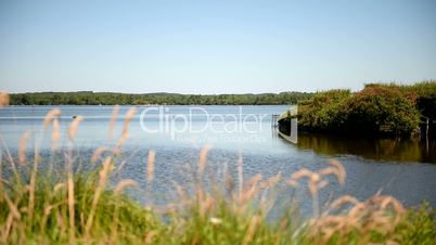 Lake in South France. Follow focus from bank to blades. Long shot.