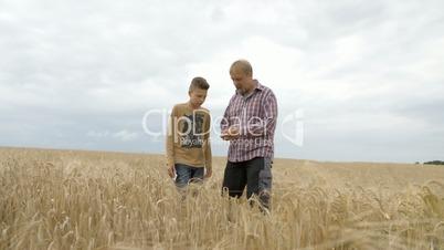Farmer man and Boy walking trough Grainfield