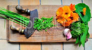 Kräuter auf einem Holzbrett und Messer