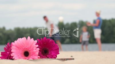 Blurred background of family playing ball